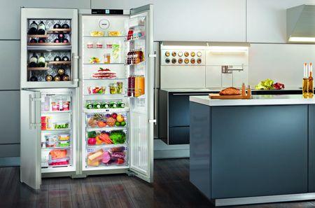 Двухстворчатый холодильник для большой семьи