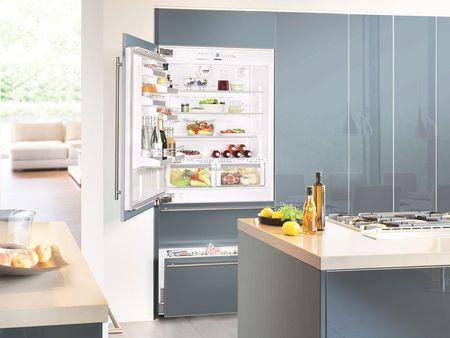 Модели встраиваемых холодильников Bosch