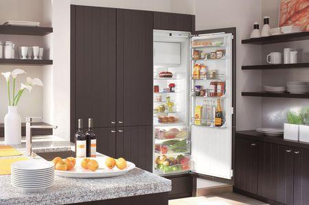 Встраиваемый холодильник шириной 50 см