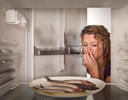 Холодильник неприятно пахнет