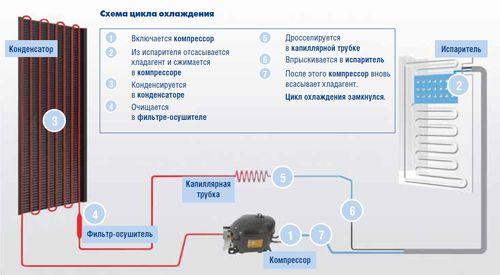 Прицип работы холодильника: схема цикла охлаждения