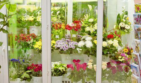 Стеклянный шкаф для цветов